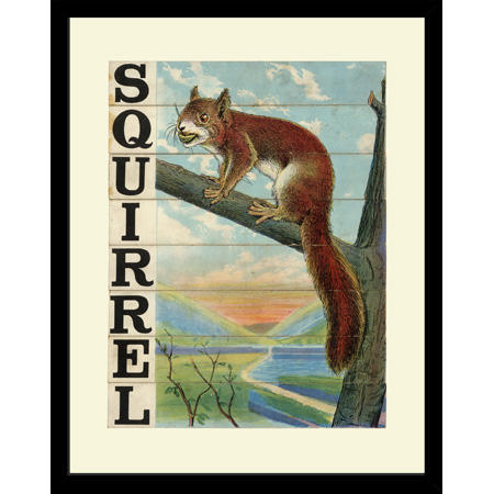 SP28SquirrelFr
