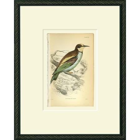 BirdEBE30