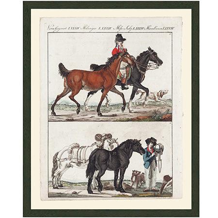 HorsesEngFrnchLgRRBr