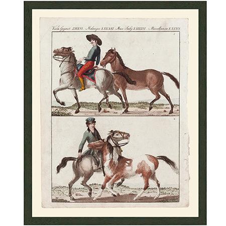 HorsesHungPolLgRRBr