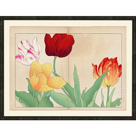 TulipSlimBsp